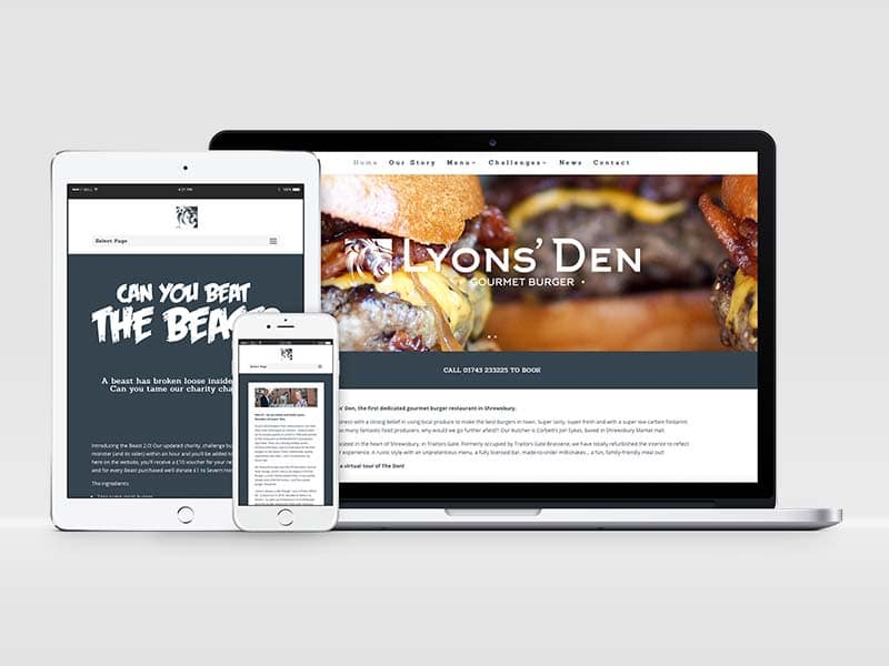 Website designed by Squeak for Lyons' Den