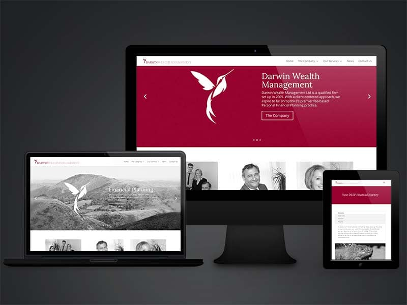 Darwin Wealth Management web design